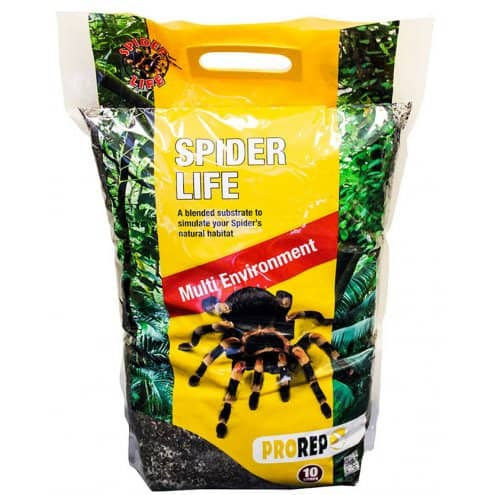 Spider life substrate